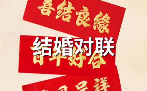 2013蛇年节日结婚对联
