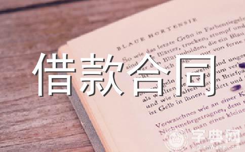 【热】借款合同范文集锦13篇