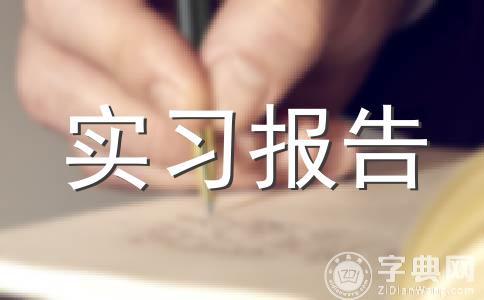 【推荐】年总总结范文(精选十一篇)
