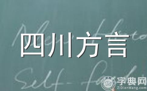 四川话词汇构成(五)