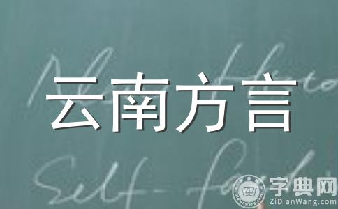 别人听不懂的云南方言家乡话