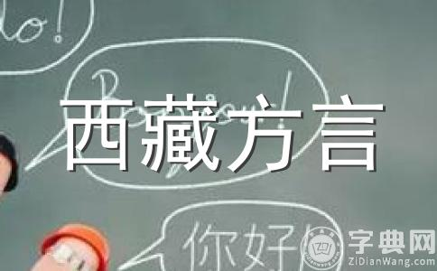 中国西部民族语言文字特点