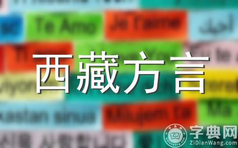 壮语方言土语中促声调分合问题棕述