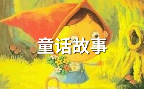 矢车菊开花了