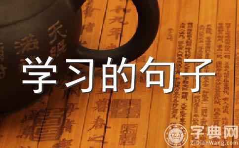 中考语文的经典语句(二)