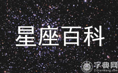 狮子座的经营能力(三)