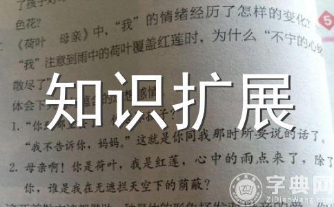 """国际社会评""""神舟""""五号发射成功"""