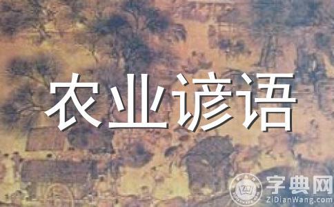农业谚语:白露身勿露