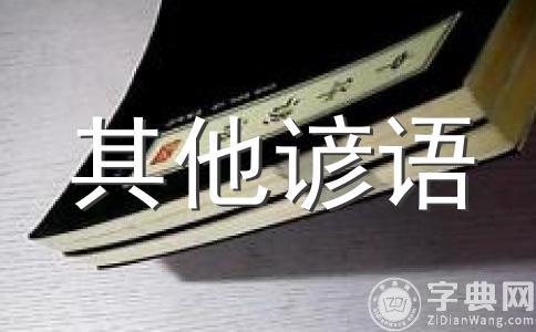 经典谚语(猫狗经)