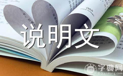 【精华】小制作作文(通用5篇)