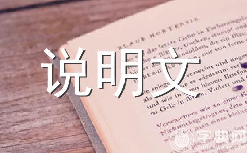 【热】我喜欢500字作文(精选12篇)