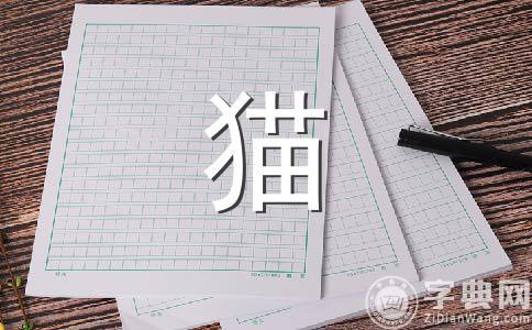 【推荐】小猫的500字作文(精选10篇)