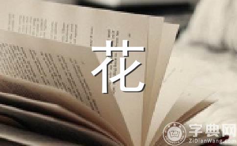 【必备】放烟花作文合集十三篇