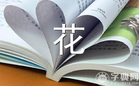 【实用】玫瑰花的500字作文集锦7篇