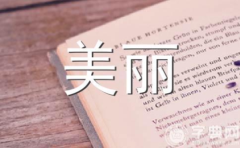 【热门】美丽的校园作文(精选6篇)