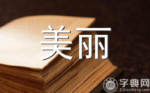 【热门】美丽的校园800字作文9篇